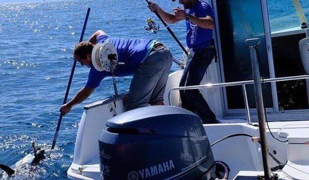 La Tuna Ragging Race de Bermeo profundizará en el conocimiento del atún