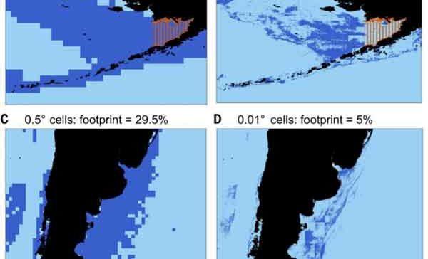 Se pesca en un 4 % de los océanos y no en el 55 % como se suponía