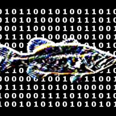 La integración de la Inteligencia Artificial en el sector pesquero moverá un negocio de 750 millones