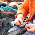 El Festival de Cine Pecheurs du Monde muestra el trabajo de la mujer en la pesca