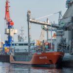 La utilización del pescado para exportación de harina desespera al Sáhara