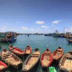 Vietnam incrementa sus esfuerzos para cumplir los requerimientos de la UE de productos del mar