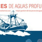Instituciones, sector, ONGs e investigadores analizan los últimos informes sobre aguas profundas
