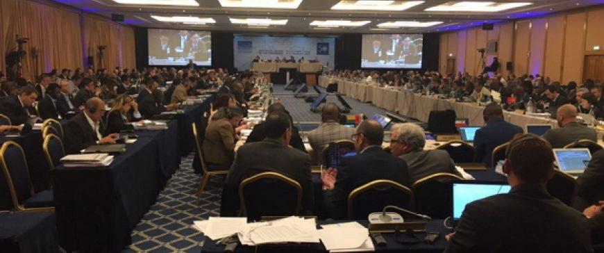 ICCAT no logra un consenso para recuperar el patuto calificando el sector de fracaso la reunión de Croacia