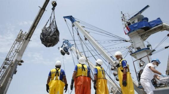 Los atuneros extranjeros siguen sin suministrar sus descargas a las plantas de transformación de Perú