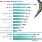 Greenpeace concede las `certificaciones verdes´ a las mejores conserveras de atún