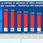 Una encuesta francesa establece el 88 por ciento de pescado se capture con «artes no sostenibles»