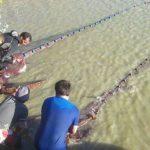 Los esteros fuente de riqueza pesquera y de turismo gastronómico