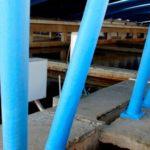 La acuicultura puede ser la salvación del impacto de las  plantas desalinizadoras