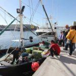 Dos barcos avilesinos y uno vasco inician la costera del bonito