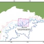 La ONG Medreact propone el cierre de una zona del  Golfo de León para recuperar la merluza