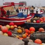 El acuerdo UE- Marruecos ha sido promulgado en el país magrebí