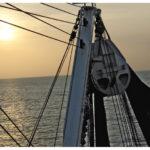 ISSF adelanta su posicionamiento sobre la gestión del atún para la reunión ICCAT