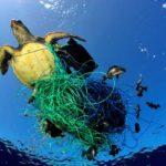 Ecologistas valoran que han sido abandonadas 640.000 toneladas de redes de pesca