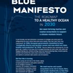 Organizaciones ambientales europeas lanzan un nuevo plan de rescate para lograr un océano sano para 2030