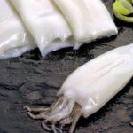 La Sociedad Nacional de Perú denuncia la presencia de 400 buques asiáticos que depredan la pota