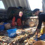 Pescadores piden a los ministros de Pesca que rechacen la reducción de días en el Mediterráneo