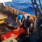Un total de 16.000 barcos chinos están fuera de control de las Organizaciones Regionales de Pesca