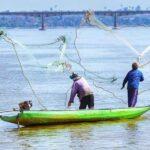 La pesca y la acuicultura representan más del 20% del PIB de Centroamérica
