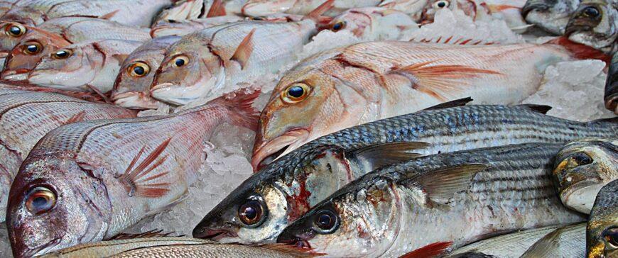 El sector espera que no suba el IVA de la alimentación como propone el Banco de España