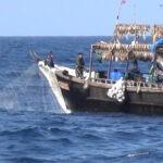Navega hacia Argentina la flota china, tras haber pescado en Perú