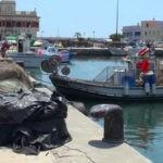 La facturación de las Cofradías de Alicante cae un 50 por ciento