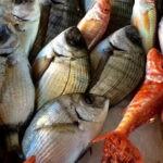 La pandemia ha provocado un aumento de las ventas de productos del mar en todo el mundo