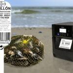 La automatización del etiquetado de productos pesqueros reduce en un 98% los errores normativa