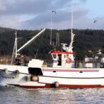 Los volanteros del Cantábrico mantienen que se ha roto el equilibrio con las cuotas de pesca 2021
