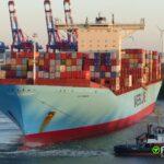 Los dos líderes en tráfico de contenedores crean equipos de descarbonización